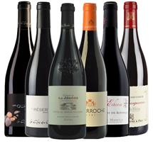 Premium Southern Rhone Collector's Mix (France)