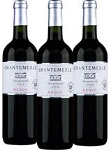 Château Chantemerle Bordeaux Vertical Collection (France)
