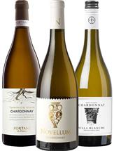 French Chardonnay Collection (France) (01)