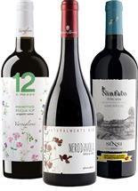 Outstanding Organic Italian Collection (Italy)