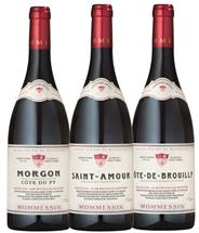Gold Medal Cru Beaujolais Discovery Mix (France)