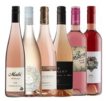 Hello Summer Rose Mixed Pack (3)